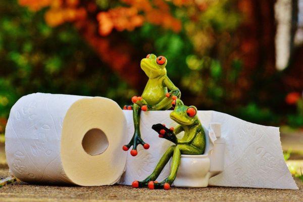 トイレのミニュチュアの上に座るカエルの置物