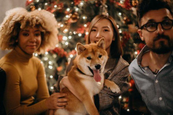 パーティーに参加する犬の様子